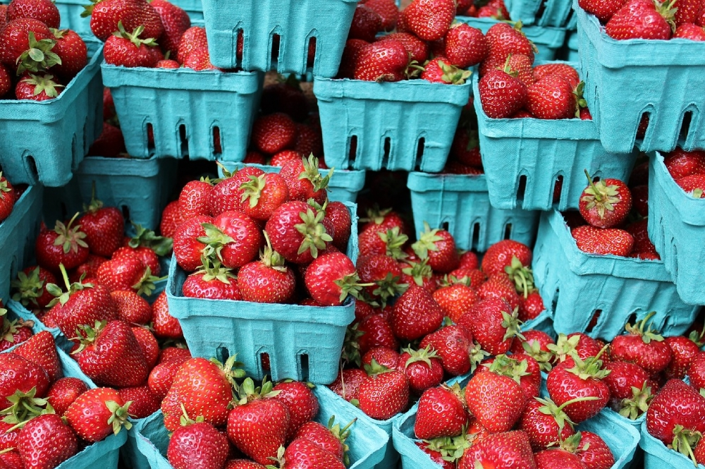 Major Savings Are Awaiting You At The Farmer's Market -- Here's How
